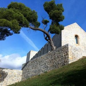 Palacio Real con árbol